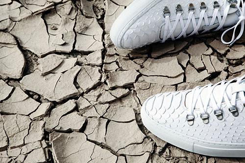 footwear developer the tailored last5